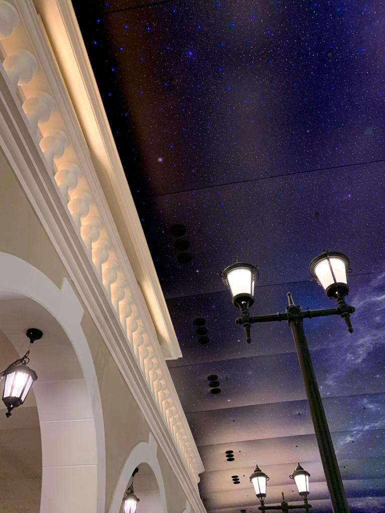 art-stretch-ceiling-palm-mall-oman-image-5